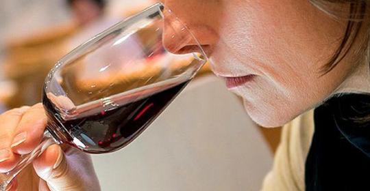 découverte vin